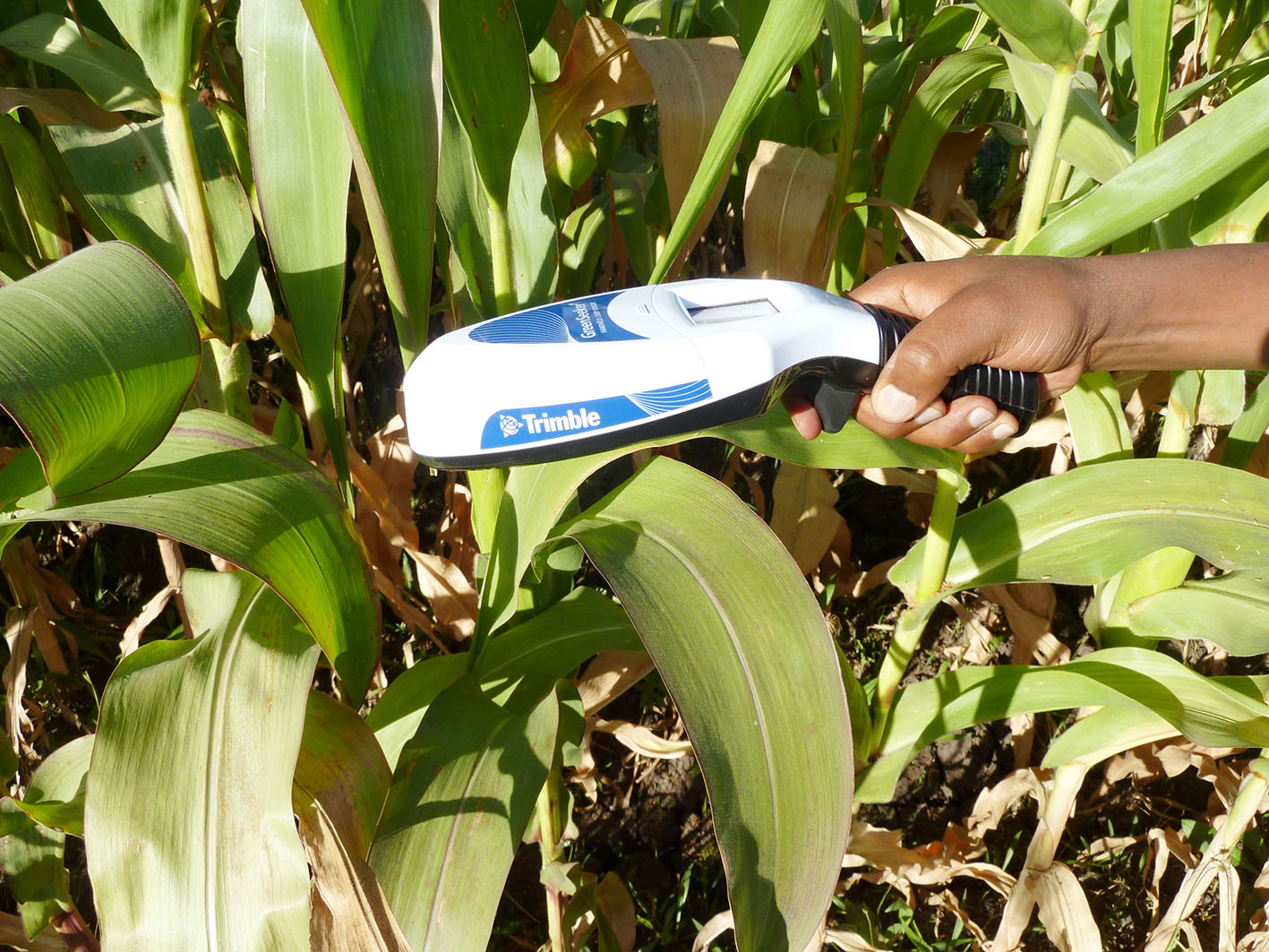 Pocket sensors for precision agriculture to reach Ethiopian farmers