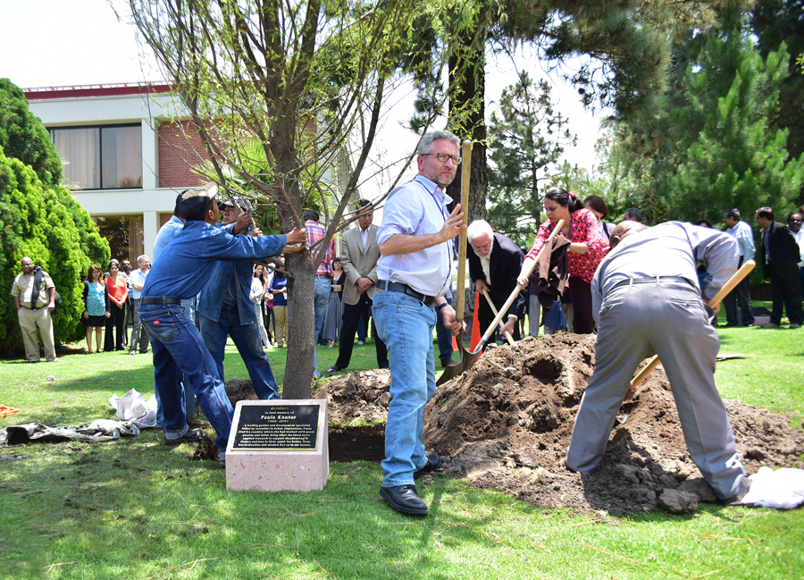 CIMMYT colleagues plant a tree in memory of Kantor. (Photo: C. Beaver/CIMMYT)