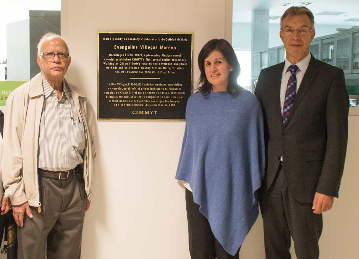Surinder K. Vasal, former CIMMYT maize scientist and World Food Prize laureate, with Natalia Palacios, head of the CIMMYT maize quality laboratory, and Martin Kropff, CIMMYT director general, helped unveil the plaque in honor of Dr. Evangelina Villegas. (Photo: A. Cortés/CIMMYT)