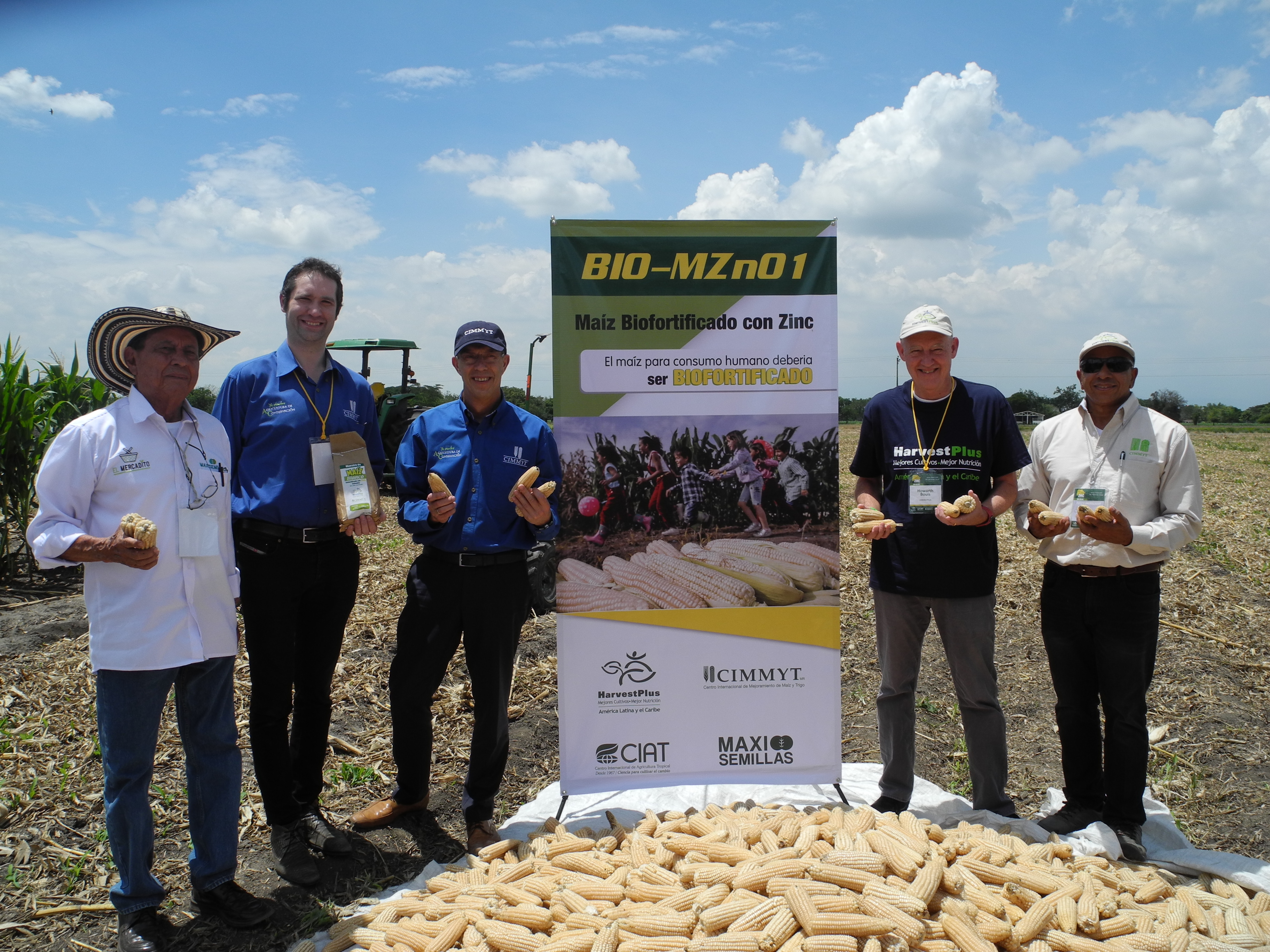 Left to right: Miguel Lengua, director general of Maxi Semillas S.A.S; Bram Govaerts, Latin America regional director at CIMMYT; Martin Kropff, CIMMYT director general; Howdy Bouis, interim HarvestPlus CEO; and Felix San Vicente, CIMMYT maize breeder; at the launch of new biofortified zinc maize. (Photo: Jennifer Johnson/CIMMYT)