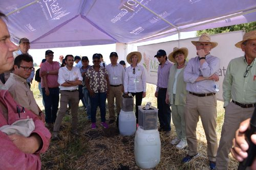 CIMMYT's Board of Trustees members met with stakeholders on a recent visit to Mexico. Photo: CIMMYT archives