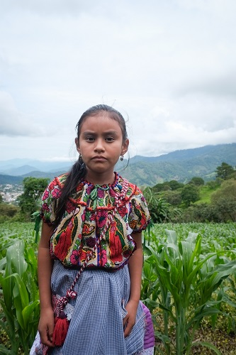 The next generation: The granddaughter of Felipa Martinez and Modesto Suarez stands in her grandparent's maize field. (Photo: Matthew O'Leary)
