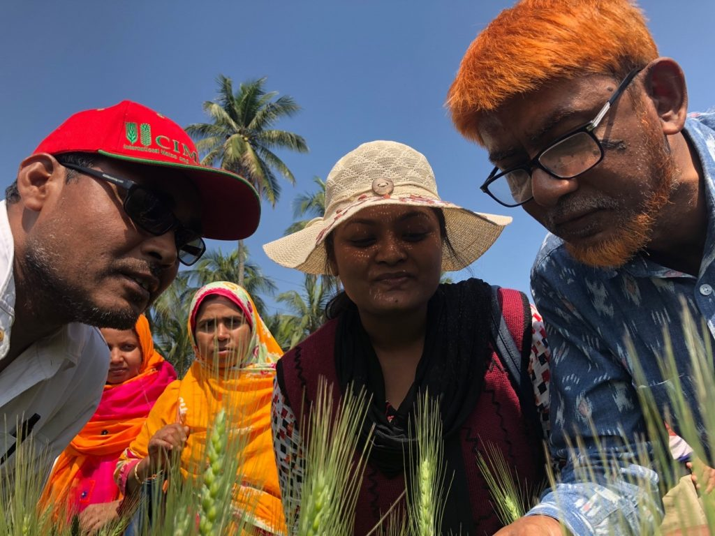 Researchers take part in Wheat Blast screening and surveillance course in Bangladesh. (Photo: CIMMYT/Tim Krupnik)