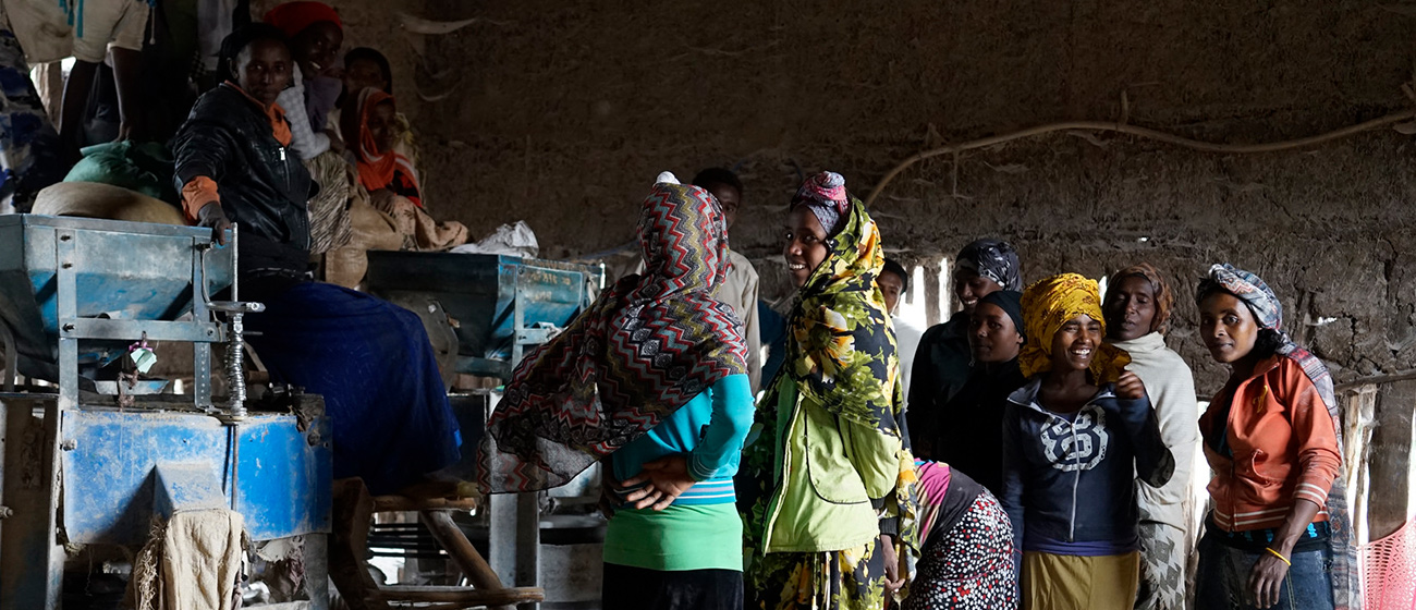 Women at a maize mill in Ethiopia. (Photo: P. Lowe/CIMMYT)