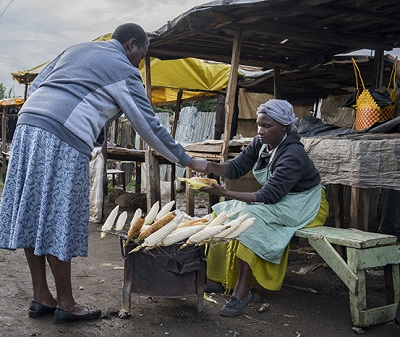 Roadside vendor sells roasted maize cobs in Kenya. (Photo: P.Lowe/CIMMYT)