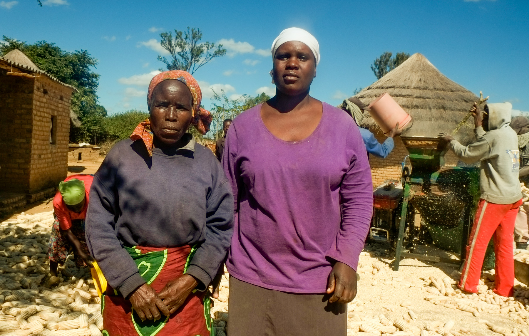 It used to take widowed farmer Loveness Karimuno (left) two or three weeks to shell her 20-ton maize harvest manually, even with the help of hired labor. Using mechanization services, all of her maize is shelled within a day, meaning she can take her grain to market faster. (Photo: Matthew O'Leary/CIMMYT)