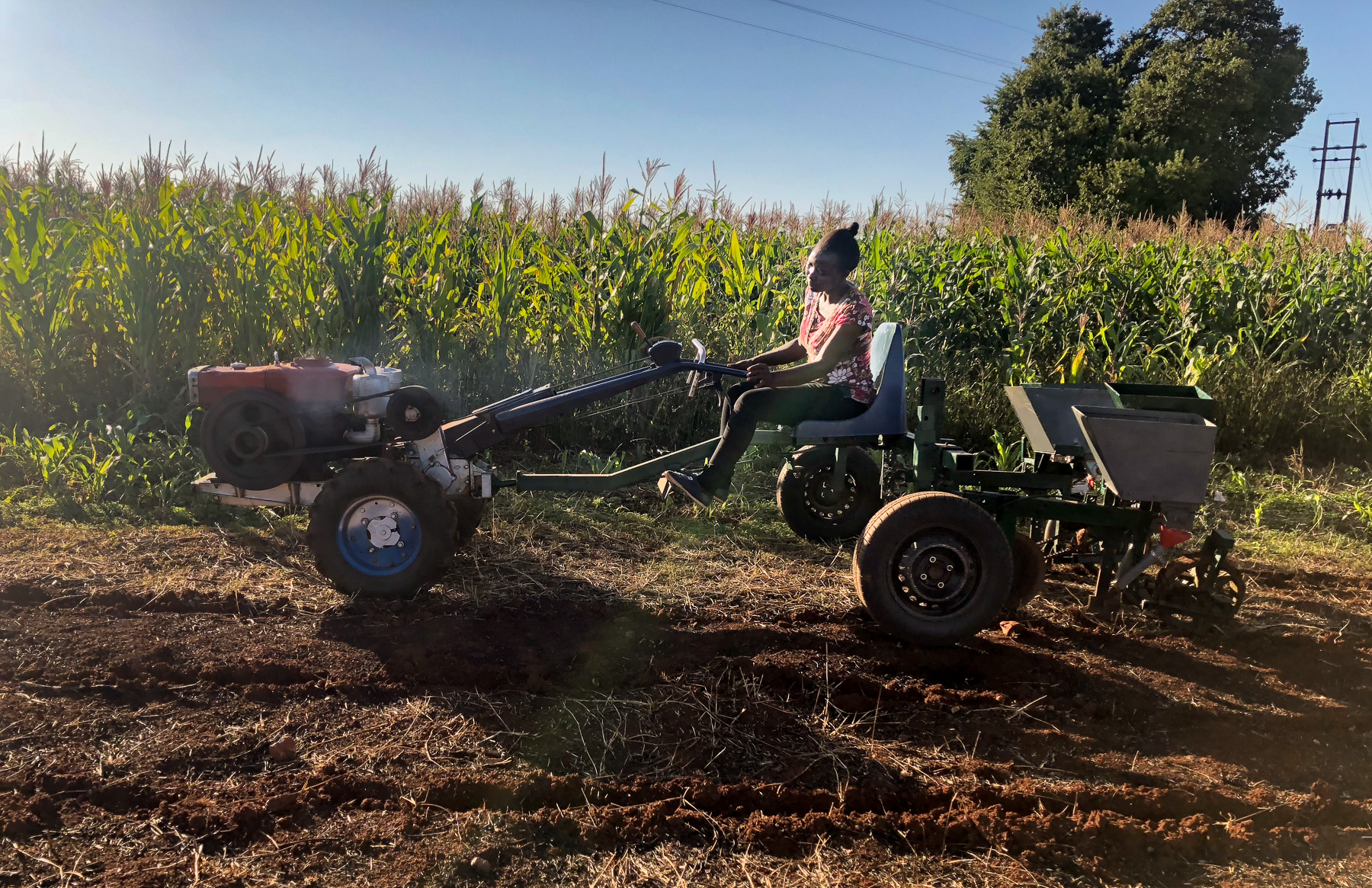 With support from CIMMYT, students at the University of Zimbabwe are working to develop agricultural machinery fitted to the environmental conditions and needs of farmers in their country and other parts of Africa. (Photo: Matthew O'Leary/CIMMYT)