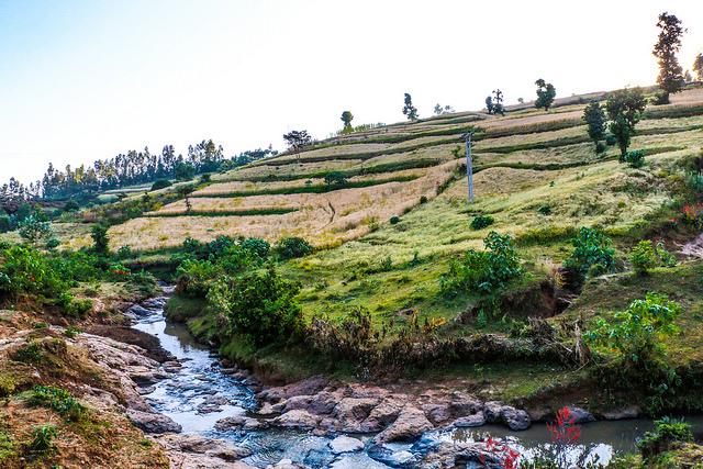 A farm landscape in Ethiopia. (Photo: Apollo Habtamu/ILRI)