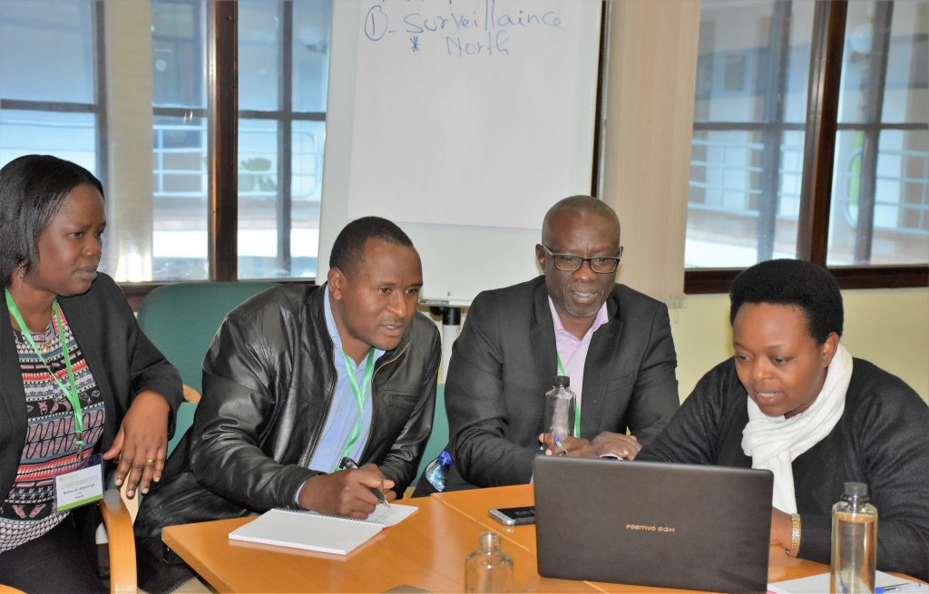 Delegates from Rwanda discuss the country's workplan at the 3-year MLN project review. (Photo: Joshua Masinde/CIMMYT)