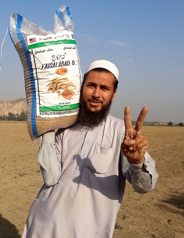 Munfiat, a farmer from Nowshera district, Khyber Pakhtunkhwa province, Pakistan, is happy to sow and share seed of the high-yielding, disease resistant Faisalabad-08 wheat variety. (Photo: CIMMYT/Ansaar Ahmad)