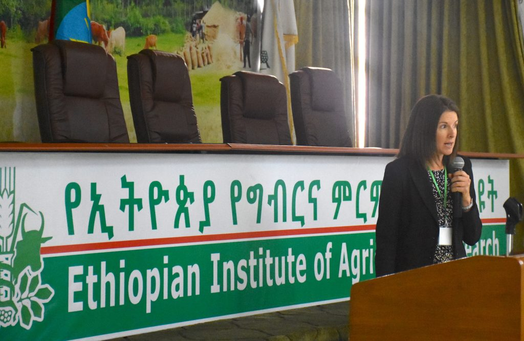 CIMMYT gender and development specialist Kristie Drucza talks about innovation barriers for female-headed households linked to gender norms in Ethiopia. (Photo: Jérôme Bossuet/CIMMYT)