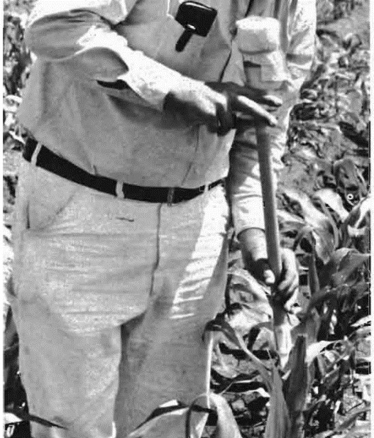 """Crop entomologists were laboriously placing young insect larvae onto plants in greenhouses and in the field until 1976, when Mihm developed the """"bazooka."""" A plastic tube with a valve that quickly and easily delivered a uniform mixture of corn grits and insect larvae into individual maize plants, the innovation allowed researchers to infest hundreds of plants in a single morning."""
