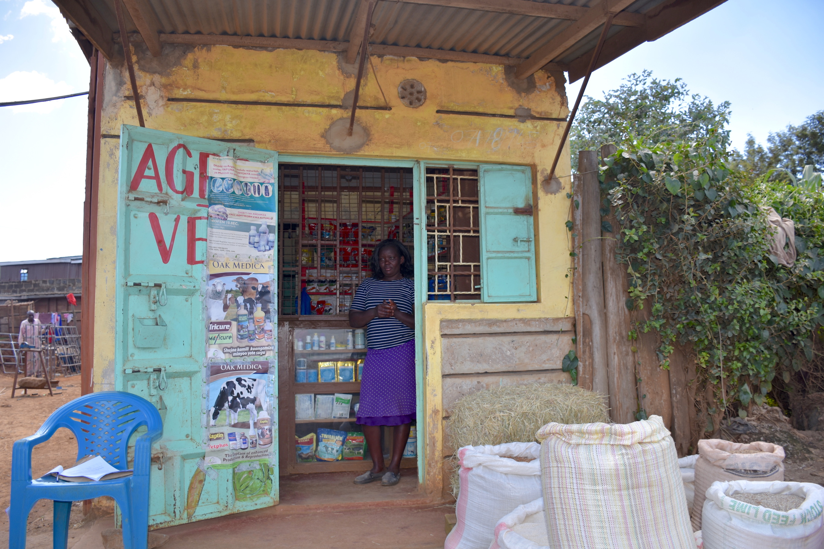 Philomena Muthoni Mwangi stands at the entrance of her agrodealer shop, Farm Care, in the village of Ngarariga. (Photo: Jerome Bossuet/CIMMYT)