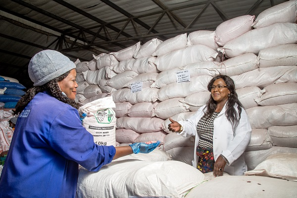 Sylvia Horemans (right) and a warehouse supervisor (left) inspect seeds at Kamano Seeds. (Photo: Lucy Maina/CIMMYT)
