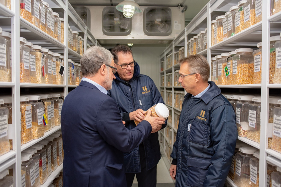 The director of CIMMYT's Global Wheat Program, Hans Braun (left), shows one of the 28,000 unique maize seed varieties housed at CIMMYT's genebank, the Wellhausen-Anderson Plant Genetic Resources Center. (Photo: Alfonso Cortés/CIMMYT)