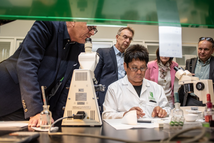 The German delegation watches the work of a lab technician counting wheat root chromosomes. (Photo: Alfonso Cortés/CIMMYT)