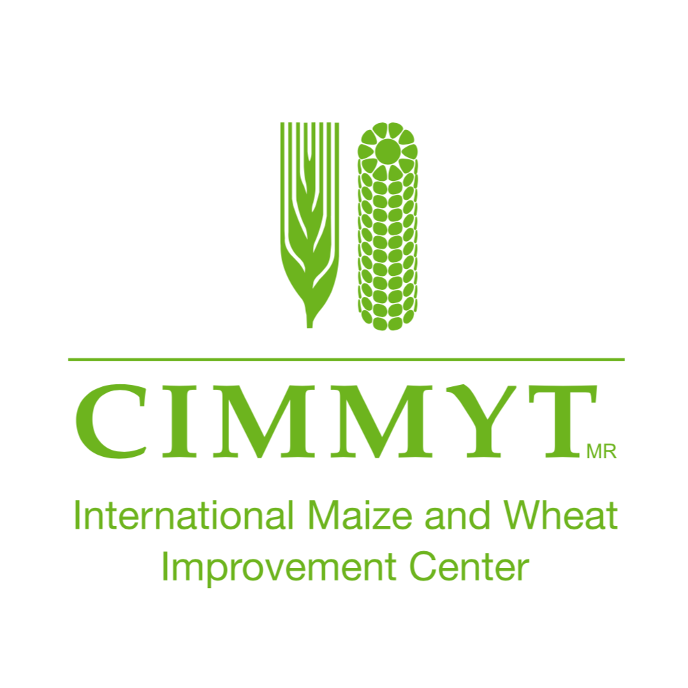 Statistical Analysis of Genetic and Phenotypic Data for Breeders | CIMMYT