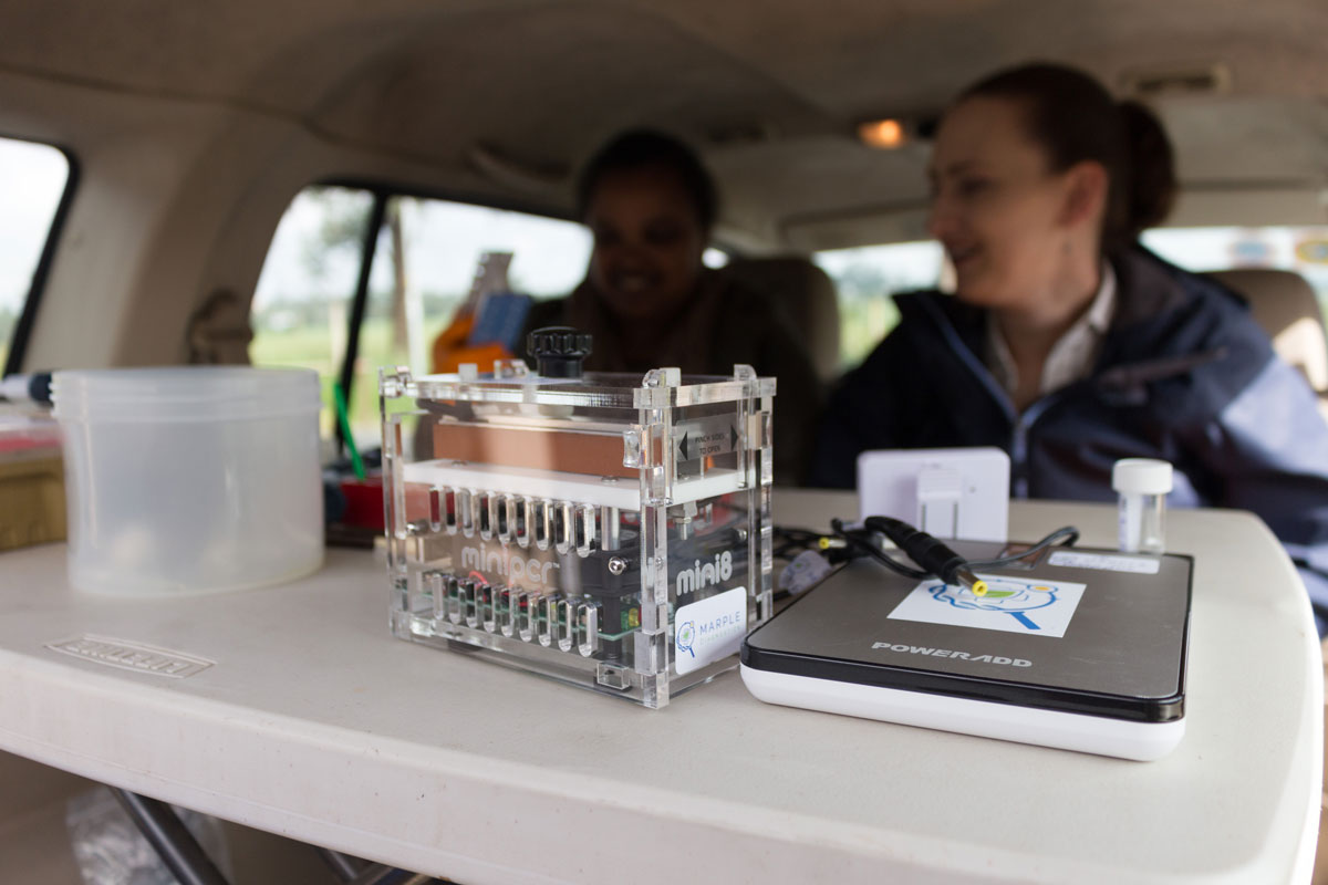 The MARPLE team uses the diagnostic kit in Ethiopia. (Photo: JIC)