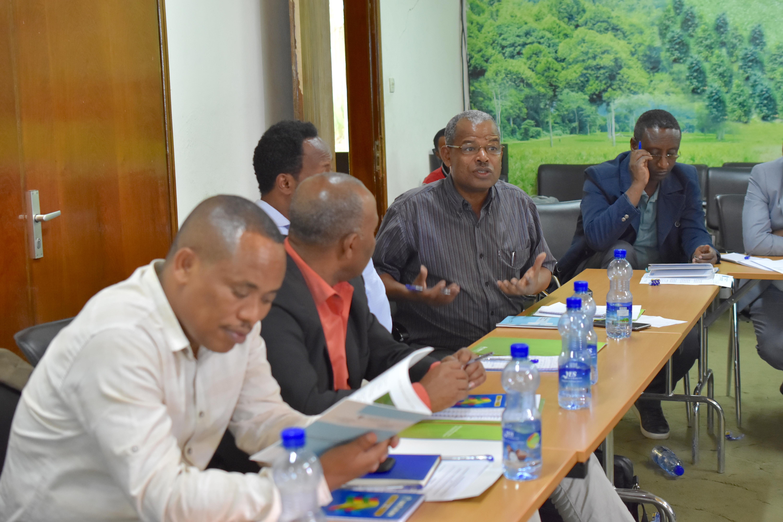 Workshop participants discuss the challenges of promoting QPM. (Photo: Simret Yasabu/CIMMYT)