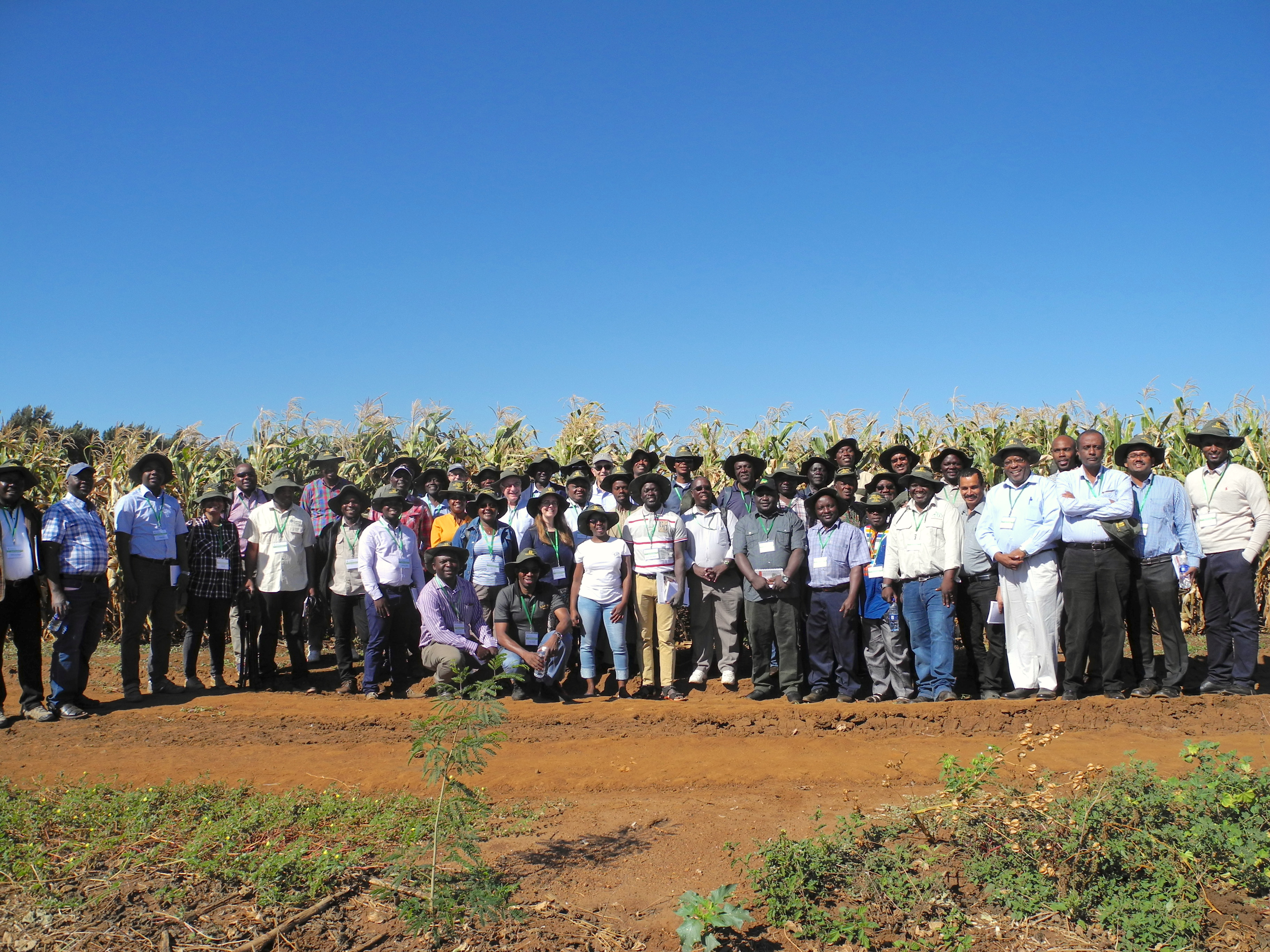 STMA meeting participants pose for a group photo during the field visit to QualiBasic Seed. (Photo: Jennifer Johnson/CIMMYT)