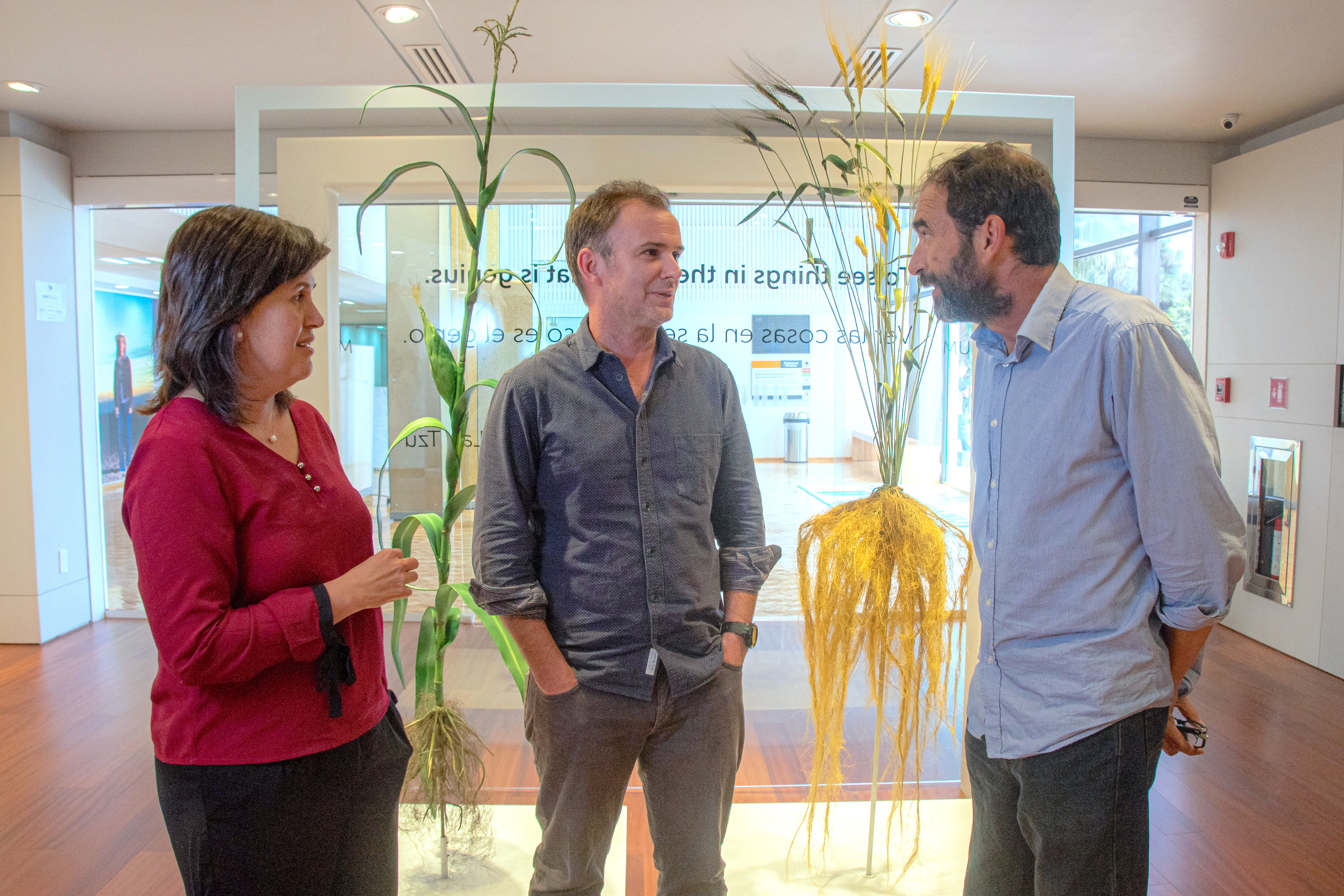 "CIMMYT scientists Natalia Palacios (left), Jason Donovan (center) and Santiago Lopez-Ridaura discuss the implications of a ""planetary health diet"" for producers and consumers in low- and middle-income countries. (Photo: Alfonso Cortés/CIMMYT)"