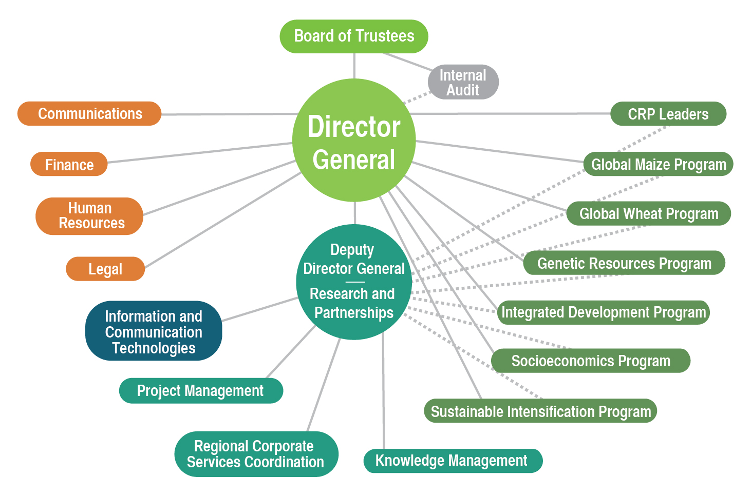 CIMMYT org chart