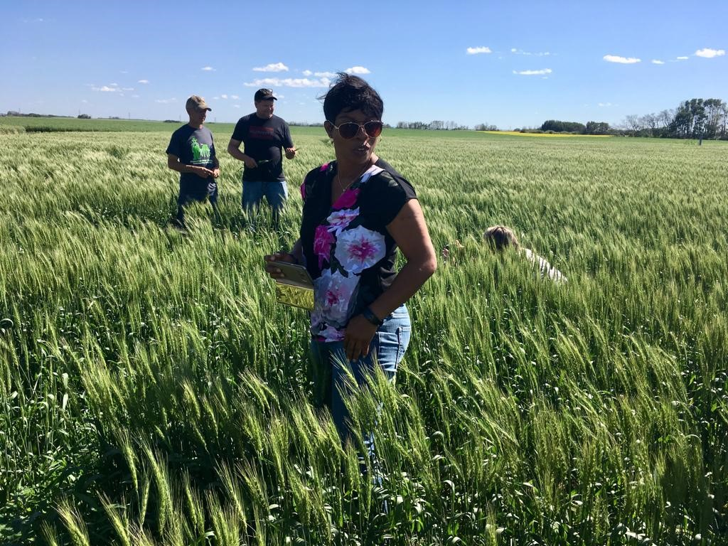 Nigerian journalist Nkechi Isaac (center) tours a Saskatchewan wheat farm. (Photo: Julie Mollins)