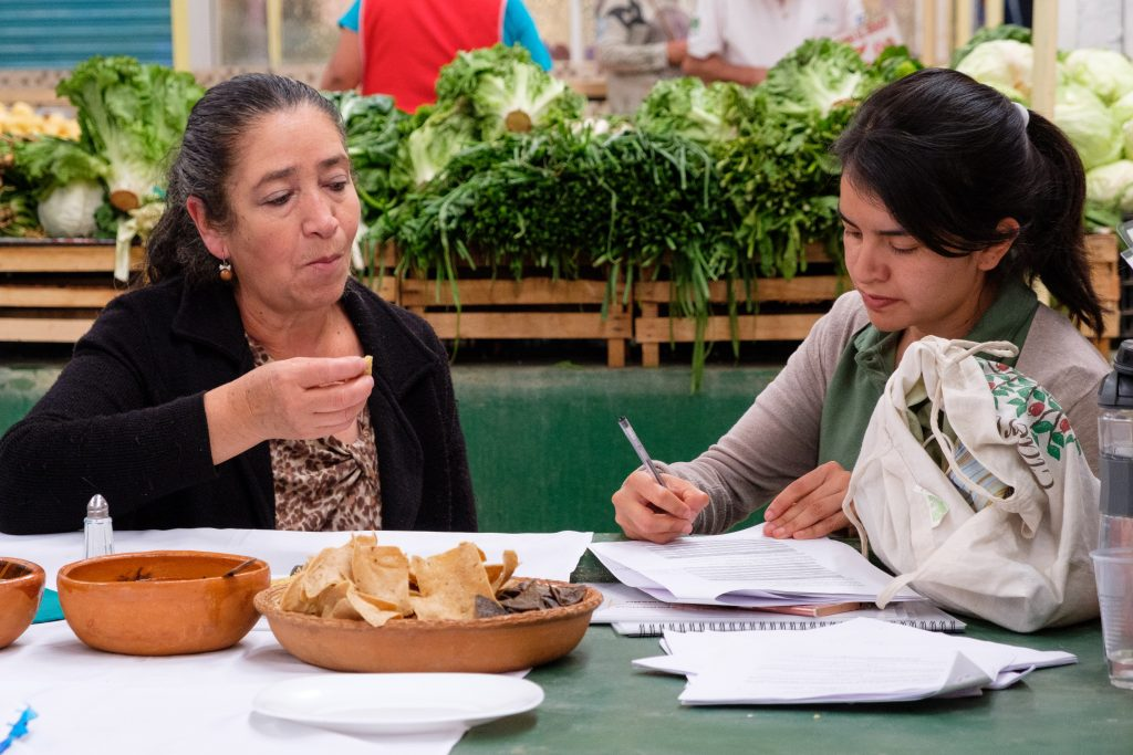 """""""There was an interesting gender aspect to this research: it was mostly women buying and making these maize-based foods, and women were more willing to pay a premium for blue maize,"""" said Miriam Perez (right), research assistant and interviewer. (Photo: Carolyn Cowan/CIMMYT)"""