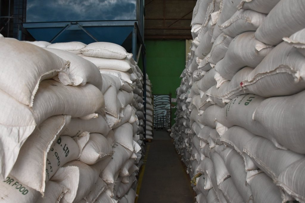 General view of the East African Seed warehouse. (Photo: Jerome Bossuet/CIMMYT)