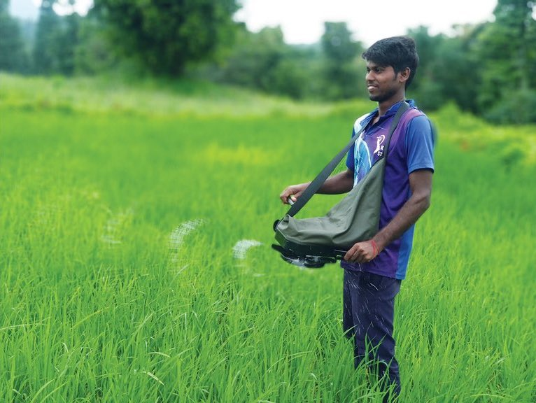 A young man uses a precision spreader to distribute fertilizer in a field. (Photo: Mahesh Maske/CIMMYT)