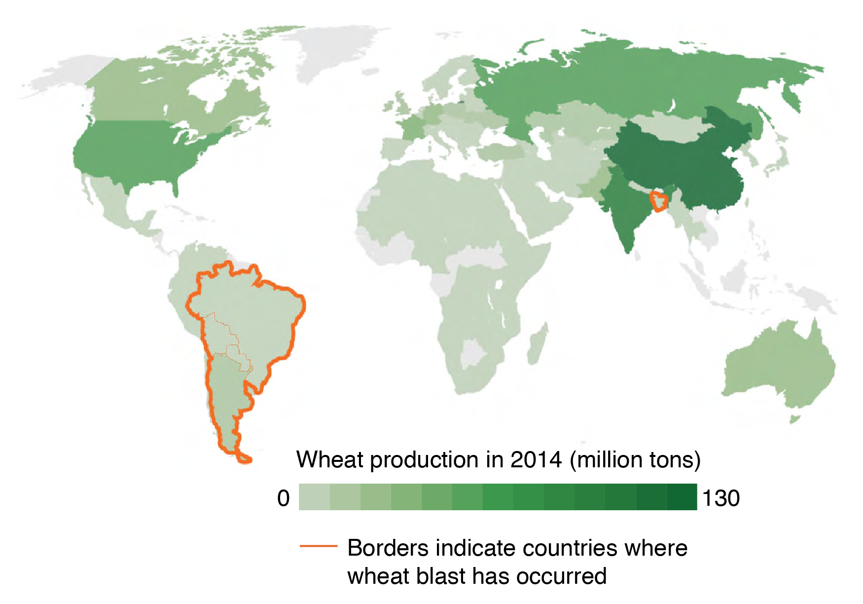 Wheat-producing countries and presence of wheat blast.