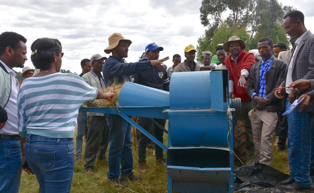 Farmers in the district of Machakel participate in a field day to learn about the use of small-scale agricultural mechanization. (Photo: Simret Yasabu/CIMMYT)
