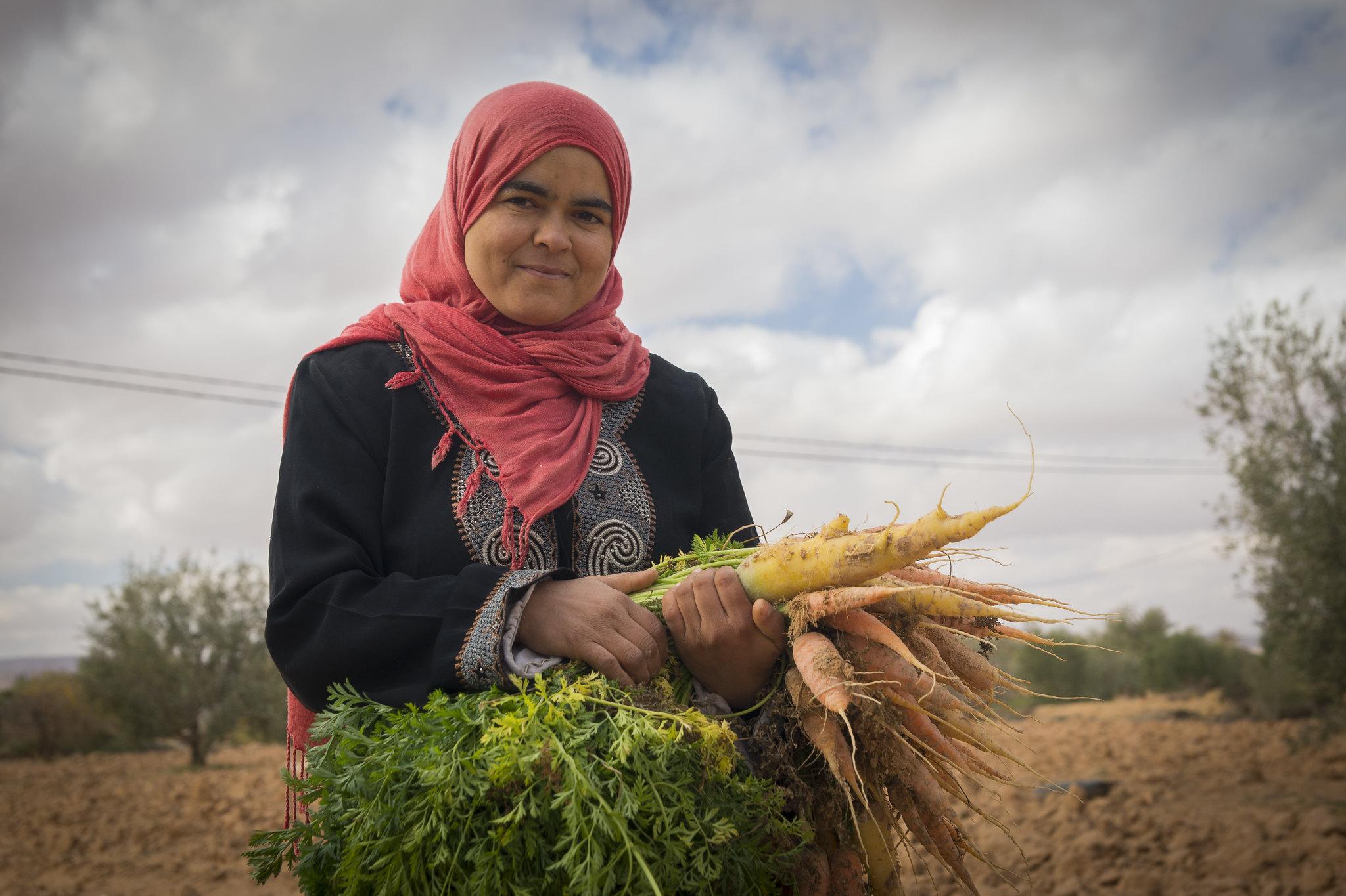 Growing vegetables in Tunisia. (Photo: ICARDA)