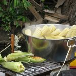 Roasted and boiled maize ears on sale in Xochimilco, in the south of Mexico City. (Photo: M. DeFreese/CIMMYT)