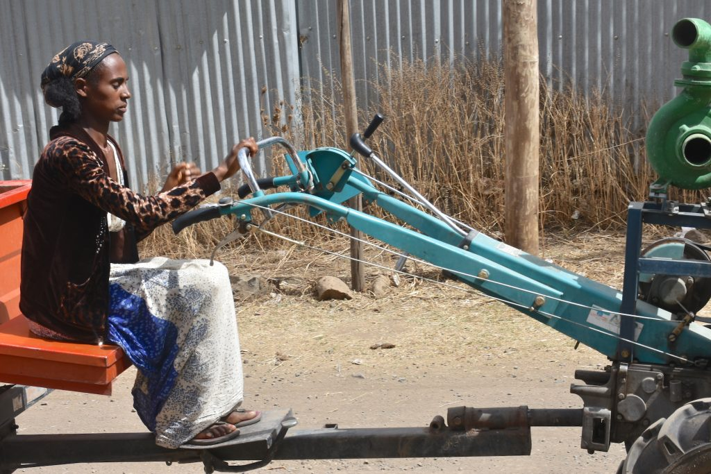 Zewdu Tesfaye drives a two-wheel tractor to the irrigation area. (Photo: Simret Yasabu/CIMMYT)