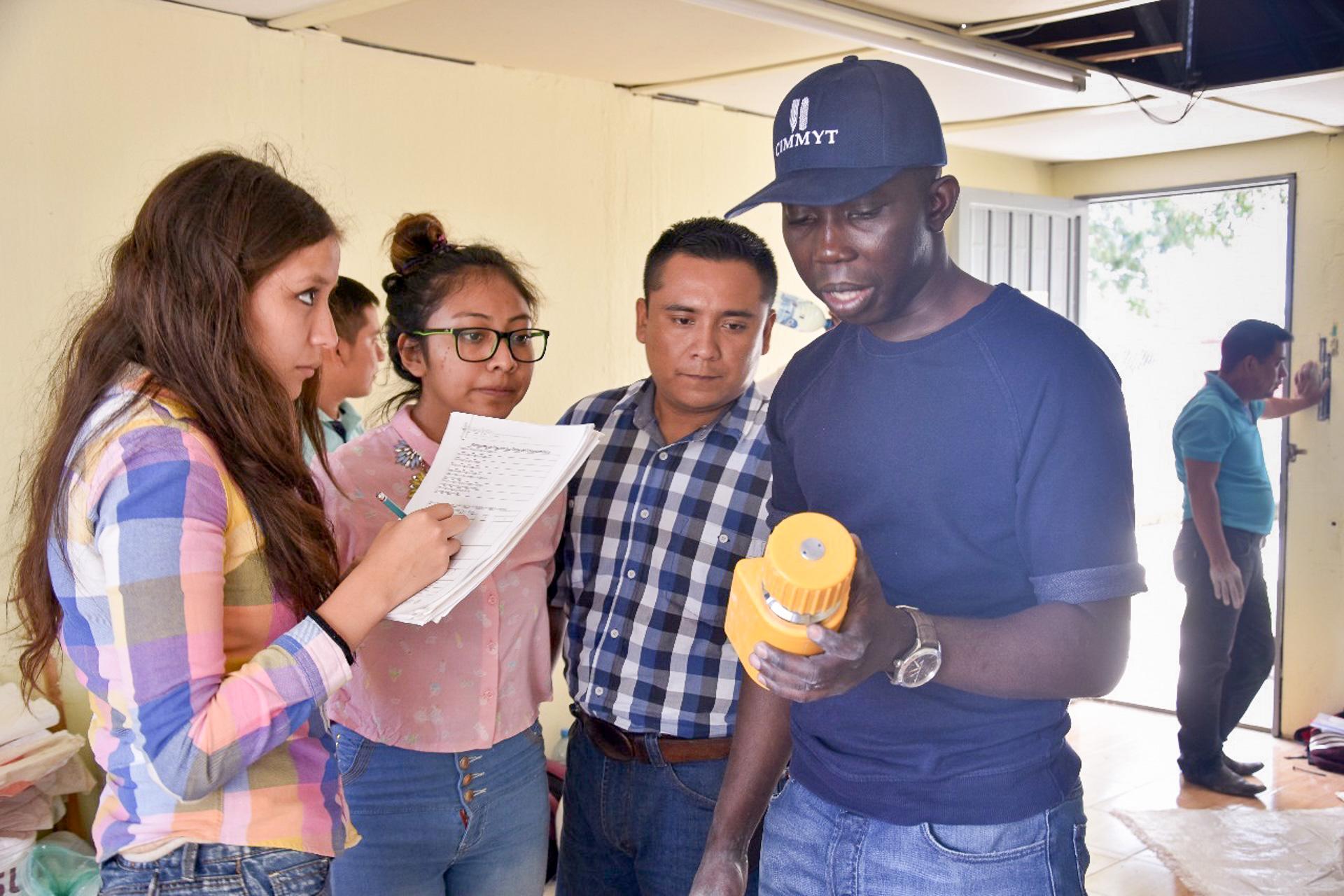 Odjo demonstrates the use of a handheld grain moisture tester in Comitán de Dominguez, Chiapas, Mexico. (Photo: Juan Carlos Reynoso)