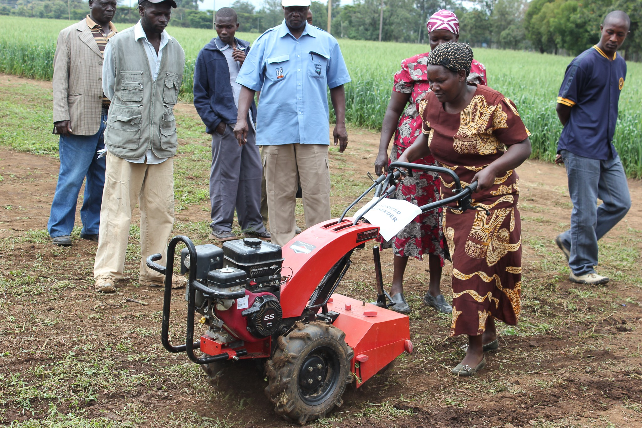 Demonstration of a minitiller, Naivasha, Kenya. (Photo: CIMMYT)