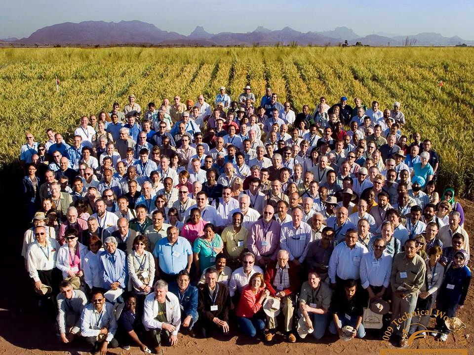 Participants in the first technical workshop of the Borlaug Global Rust Initiative in 2009 take a group photo at CIMMYT's experimental station in Ciudad Obregón, Sonora, Mexico. (Photo: CIMMYT)