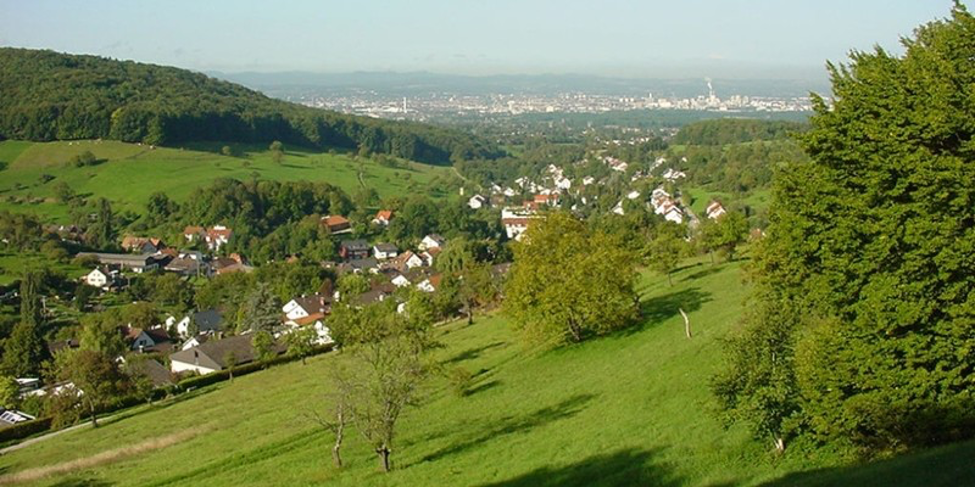 General view Inzlingen, Germany, with Basel in the background. (Photo: Hans Braun)