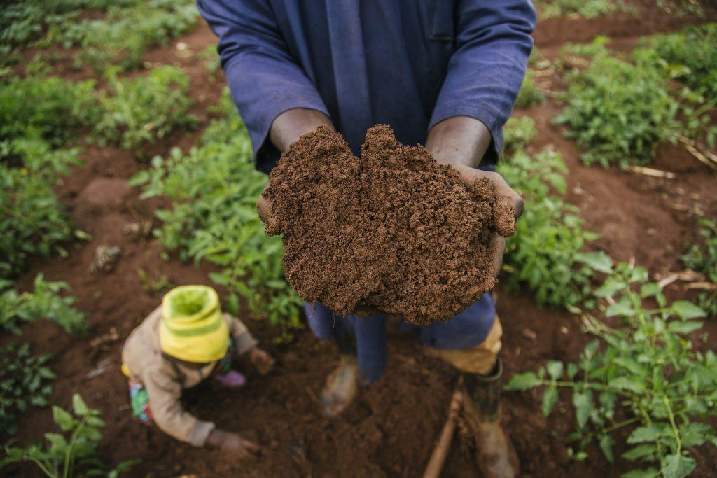 Douglas Mungai holds up soil on his farm in Murang'a county, Kenya. (Photo: Robert Neptune/TNC)