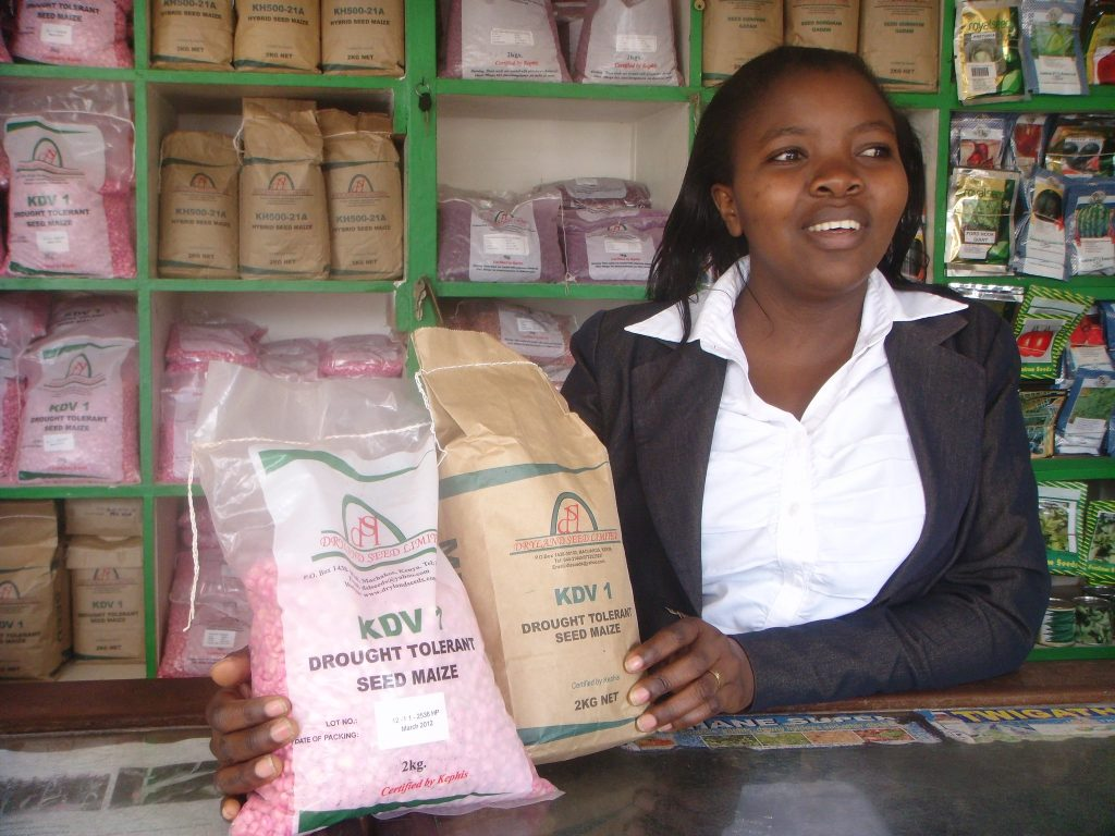 A shop attendant displays drought-tolerant maize seed at the Dryland Seed Company shop in Machakos, Kenya. (Photo: Florence Sipalla/CIMMYT)