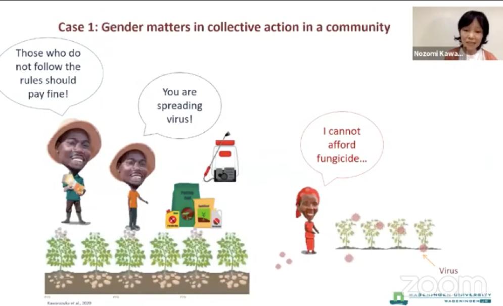 Dimensiones sociales y de género del control de plagas y enfermedades: un llamado a la colaboración (Gráfico: Nozomi Kawarazuka/CIP)