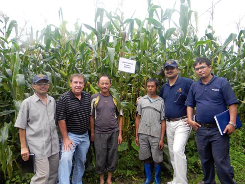 CIMMYT-Maize-Team