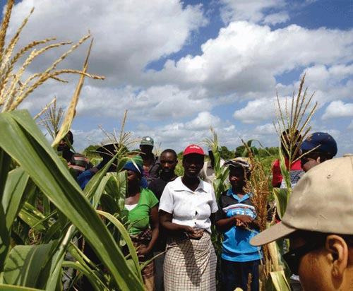 Drought tolerance, conservation agriculture, and double