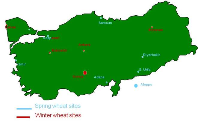 Figure 1. Location of IWWIP breeding sites inTurkey.