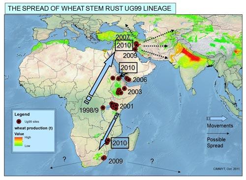 Ug99-0verview-map-Nov-2011-v2-cropped-(1)
