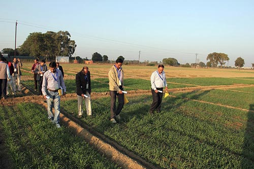 Agronomists receive GreenSeeker training at a DWR field. Photo: RK Sharma, DWR