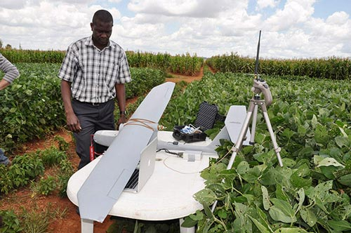 "The ""Sky Walker"" advances phenotyping in Zimbabwe. Photo: J.L. Araus, University of Barcelona/CIMMYT"