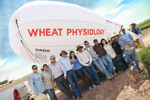 Members of the wheat physiology group pose with a blimp used for aerial remote sensing.