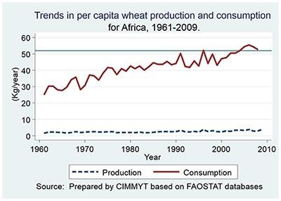 Se necesita maíz de grano blanco en las zonas marginadas de Paquistán